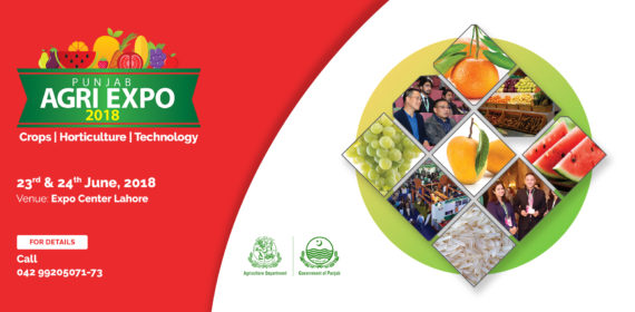 Horti-expo-web-banner-7-1